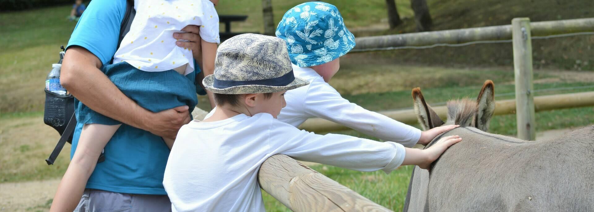 Crédit photo : Stéphanie Dabernat-expérience-armoripark- parc-de-loisirs-begard
