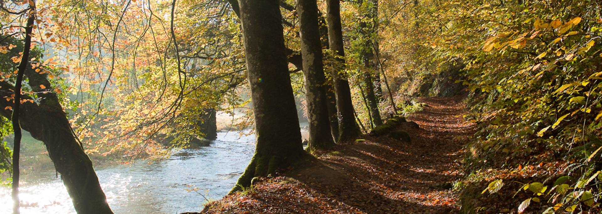 Chemin de randonnée le long de la rivière du Léguer ©G. Dupont