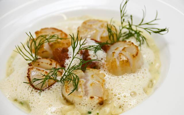 Coquilles Saint Jacques cuisinées ©J. Piriou